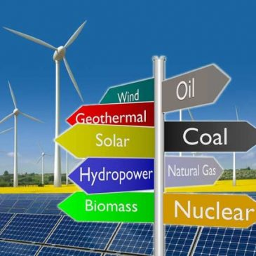 Looking for information about green economy?